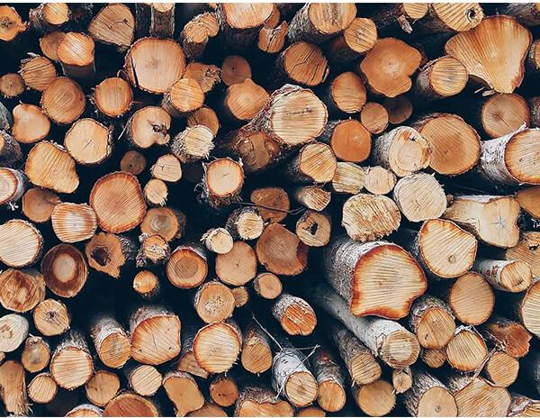 độ ẩm gỗ bao nhiêu là tốt